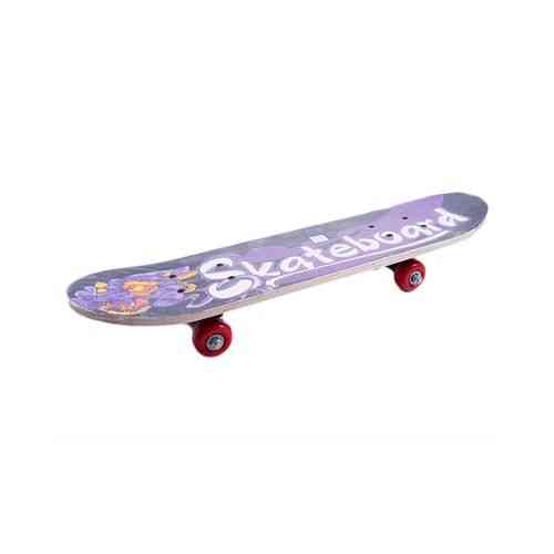 High Quality Skate Board by Asaan Sports - 6x23""
