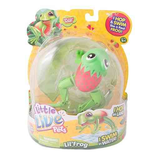 Walker and Swimmer Frog - Green